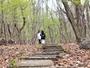 リラクシアの森散策