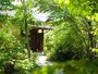 【離れのお部屋へ続く小道】  どこにいても、自然がやさしく語りかけてきます。