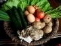 自家菜園や地元の農家から仕入れる採れたての新鮮な野菜は料理の主役!