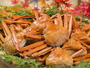 【男鹿直送 紅ズワイガニ】-2018年5月まで食べ放題!冬はアツアツの焼き蟹をお楽しみください!!