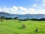 *緑のガーデン/海が目の前に広がるHO ALOHAのお庭!ビーチまでも歩いて行けます♪