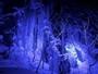 【氷瀑】奥入瀬渓流の見所、美しくライトアップされた氷の滝を巡るツアーを3月18日まで開催。