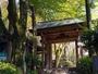 **【瑞宝寺公園】太閤秀吉が愛用した石の碁盤も。紅葉の名所で当館すぐそば。
