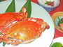 【お料理一例】冬季限定のワタリガニを使用したお料理★