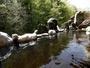 十勝川温泉は珍しい植物性天然モール温泉。是非お楽しみください。源泉100%かけ流しです。