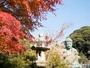 鎌倉・湘南エリアの魅力を満喫するのに絶好の立地!