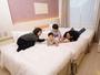 親子ベッドルームは、リーズナブルで小さなお子様のいらっしゃるご家族にも人気のお部屋です。