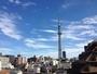 屋上からの展望