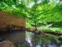 【川の湯「岩露天風呂」】※豊沢川と木々に囲まれて、森林浴をしながら温泉をご満喫いただけます,