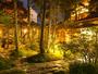 夜にライトアップされる中庭。夕闇に浮かび上がる木々は幽玄さを帯び、昼とは違った美しさを感じます。