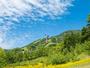 *[自然体験グラウンドピュア/ジップライン]大きな青空と自然の中の空中飛行は気分爽快♪