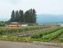 ホテルファミリーオみなかみ農園