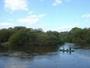 湿原を流れる釧路川カヌーツアー(宿泊限定で2-3名様までのプライベートツアーあり、3名様以上要相談)