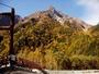 明神岳黄葉、10月20日ころ。明神橋からは、主峰が見えません。明神館の場所、明神まで、戻って下さい。