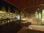 1階 庭園露天風呂「森の清流・滝壺の湯」 ダイナミックな滝の流れを眺めながら入る立湯をお楽しみください