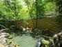 <男性大浴場>万葉の時代より湧く、由緒正しき温泉。竹林に囲まれたお風呂で温泉をゆったりと満喫。